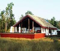 Monsoon Forest (Bandhavgarh)