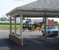 Harvest Drive Family Inn