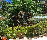 Comfort Gardens - Guest House