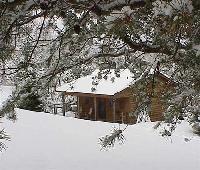 Fire Mountain Inn Cabins & Treehouses