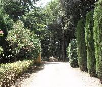 Mas Jonquer - Rural Guest House