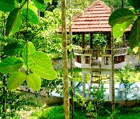 Emarald Crescent Resort - Wayanad .