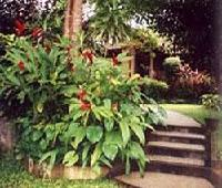 De Munut Balinese Resort and Spa