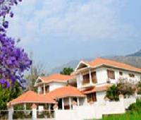 Chandana Royal Resort ( 45kms away from Munnar)