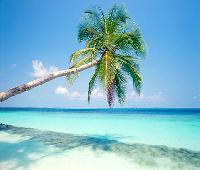 Sheen Beach Resort