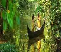 Green Fields Kumarakom